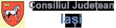 iasi - logo.PNG
